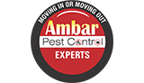 Ambar Pest Control Experts